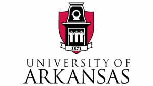 University of Arkansas: BSN, RN to BSN, Masters