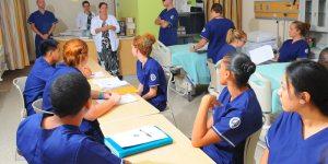 The History of Nursing  Nursing School Hub