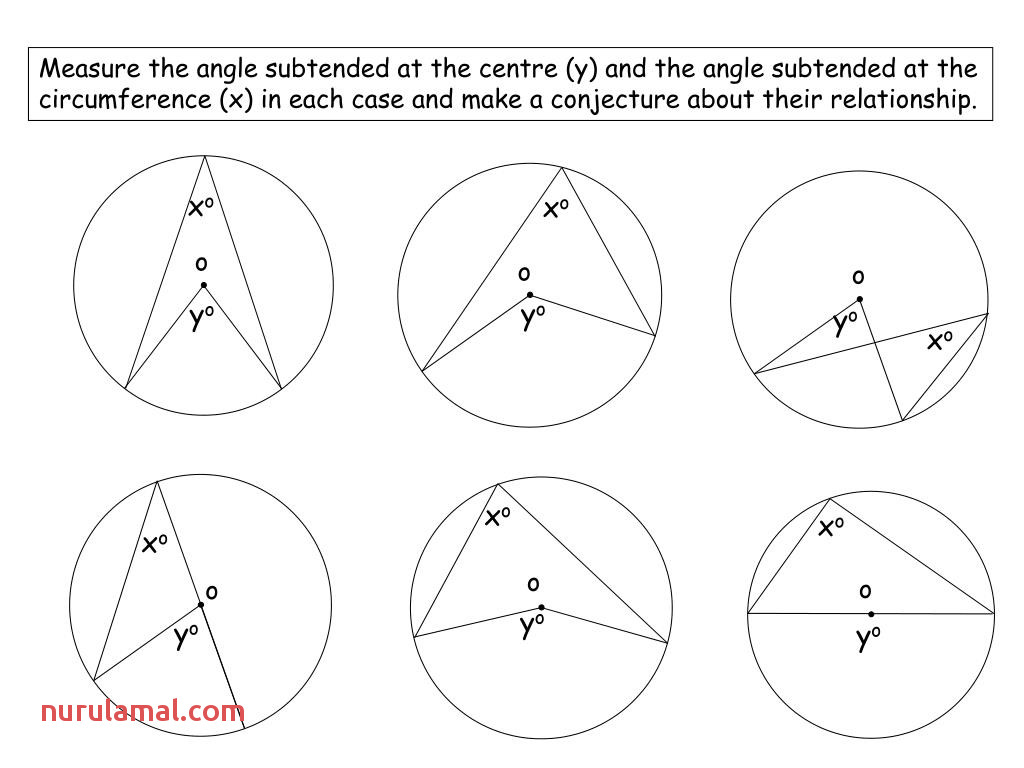 Math Worksheet Acute Angles