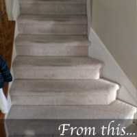 Carpeted Stairs Pictures. Diy Carpeted Stairs Before With ...