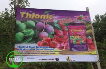 Fungisida Thionic 76WG Apel