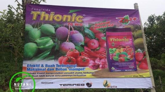 Fungisida Thionic 76 WG Menjadikan Buah Apel Lebih Mulus