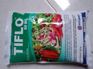 fungisida Tiflo 80WG