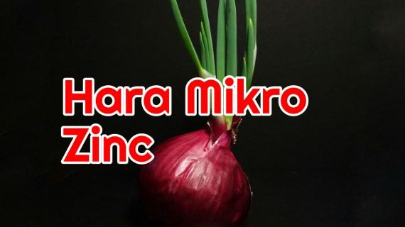 Peranan Unsur Mikro Zinc atau Seng Pada Tanaman