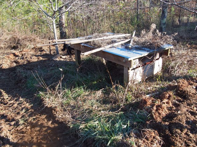 simple chicken shelter in the orchard