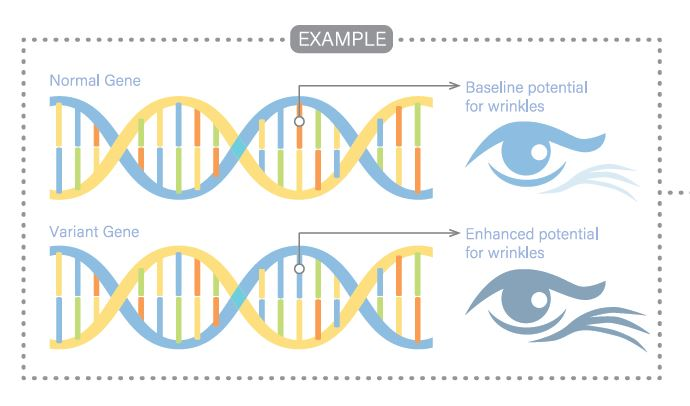 We took a DNAnlysis DNA Test and here's what we Learnt