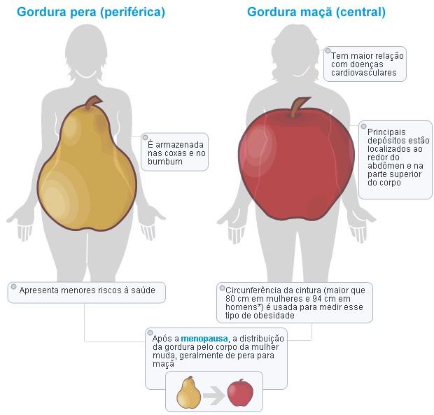 gordura-visceral-corpo-em-forma-de-pera-e-maçã