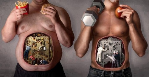 somos o que comenos