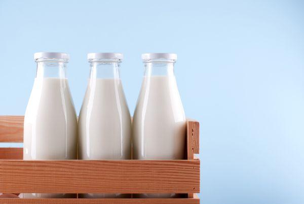 tipos-de-leite
