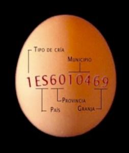 foto etiqueta huevo