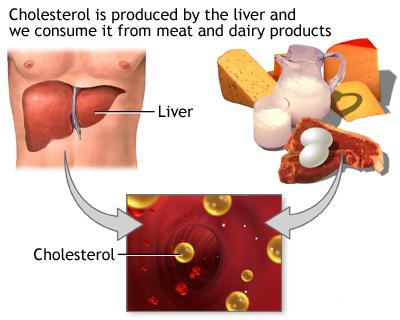 lower-cholesterol2