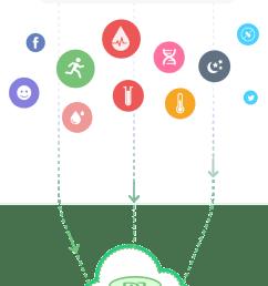 fp diagram [ 656 x 1702 Pixel ]