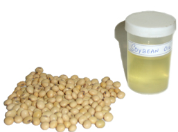 soybean oil and soy seeds