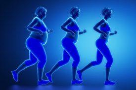 5 Mythes sur la graisse décryptés