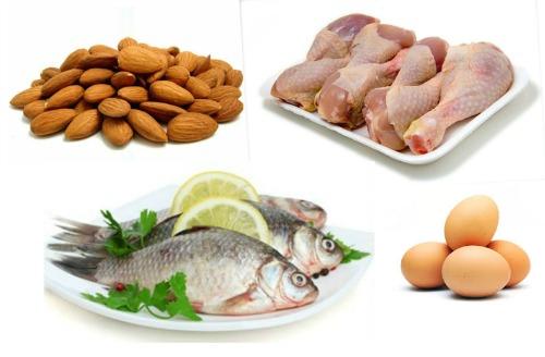 Vegetables Protein