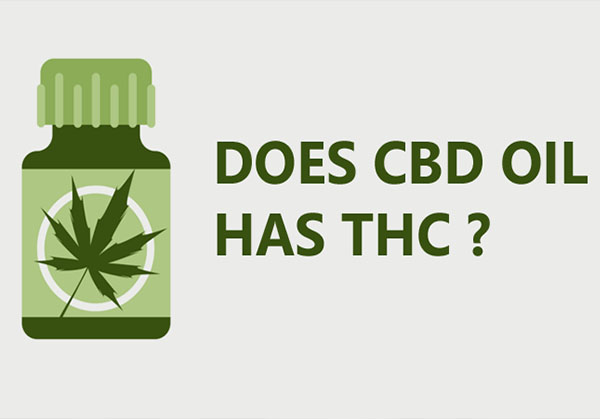 You are currently viewing Does CBD Oil have THC?