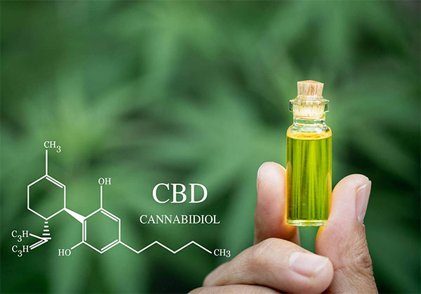 You are currently viewing CBD Oil Side Effects on Kidneys