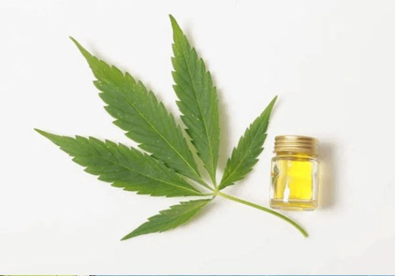 Read more about the article How Long Does CBD Stay In Your System