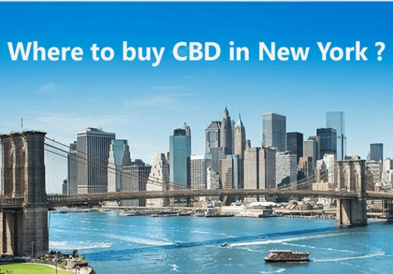 Read more about the article Where to Buy CBD Oil In New York State?