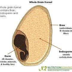 Grain Kernel Diagram Vauxhall Astra H Radio Wiring Train With Wayne Can Whole Food Help You Manage Weight Contains Bran Endosperm And Germ
