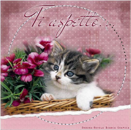 Cartoline amicizia