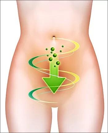 Nettoyage du colon est une façon naturelle de se débarrasser des kilos en trop.