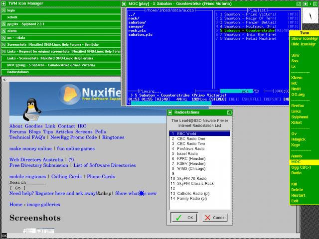 NetBSD 3.1 with TWM
