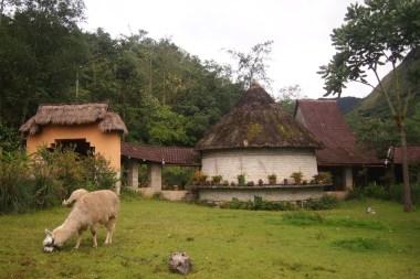 Leymebamba müzesi