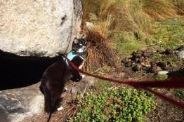Cuchu ile trekking