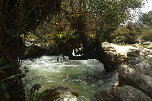 Rio Santa - Santa Nehri