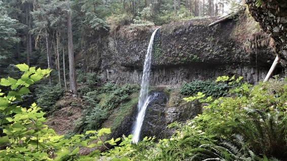 Middle North Falls - Silver Falls SP