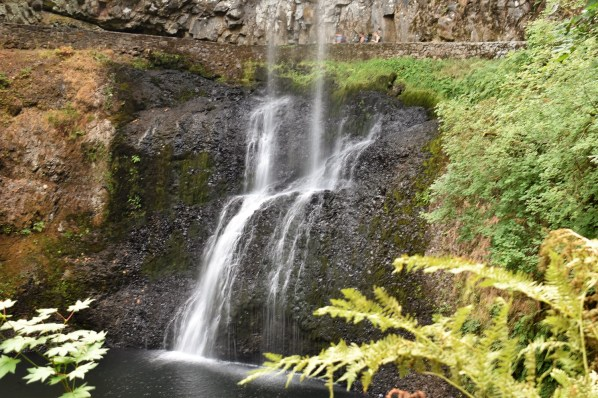 Lower South Falls - Silver Falls SP