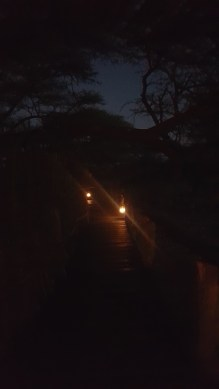 Onguma Tree Top