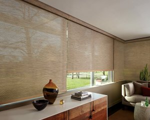 Hunter Douglas Solar Screen Shade in Black Forest, CO