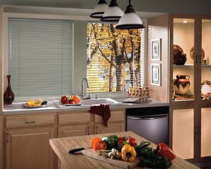 Hunter Douglas mini blinds in Highlands Ranch, CO