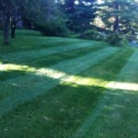 NVS-Landscaping-Lawn-Mowing-04