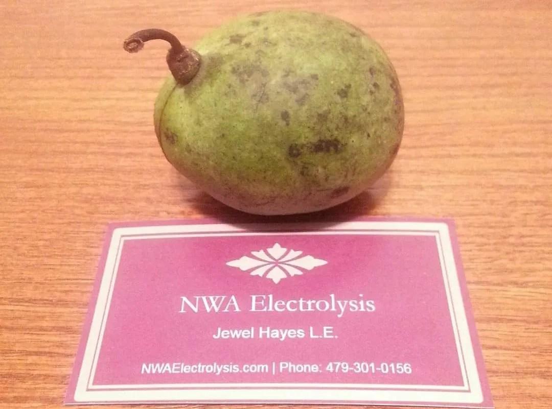 Contact NWA Electrolysis