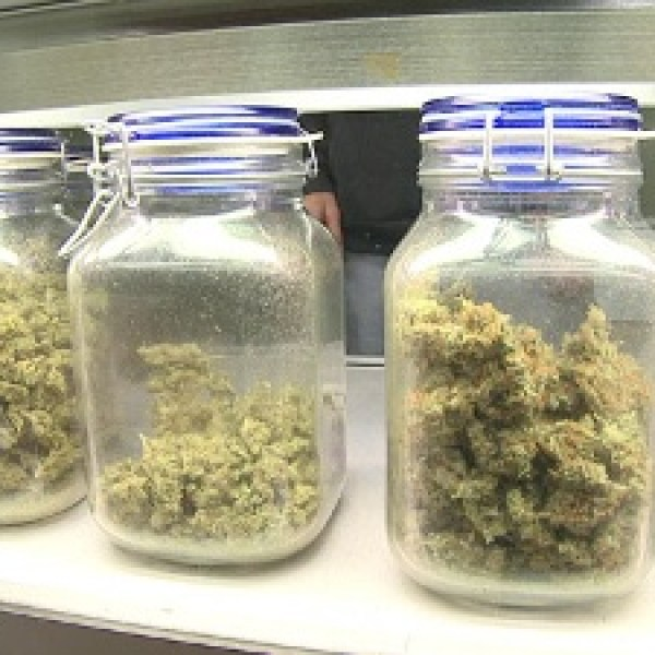 Mass-medical-marijuana-jpg_20161213182016-159532