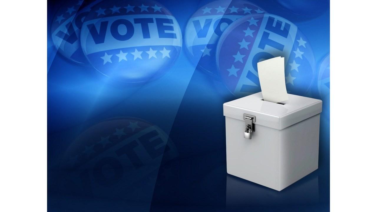Vote Generic 2_1551913237833.jpg.jpg
