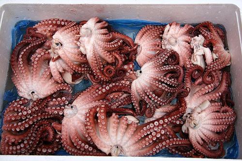 https://i0.wp.com/www.nwasianweekly.com/wp-content/uploads/2012/31_27/world_seafood.jpg?resize=500%2C333
