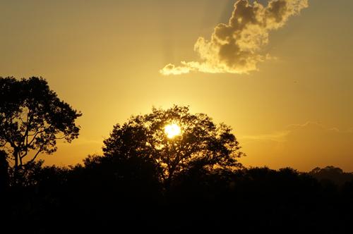 https://i0.wp.com/www.nwasianweekly.com/wp-content/uploads/2015/34_53/blog_sunset.JPG?resize=500%2C332
