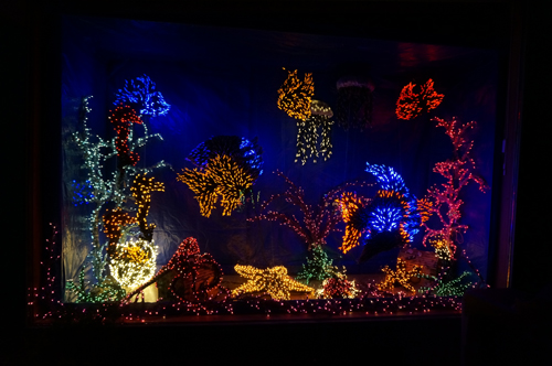 https://i0.wp.com/www.nwasianweekly.com/wp-content/uploads/2016/35_01/blog_aquarium.JPG?resize=500%2C332