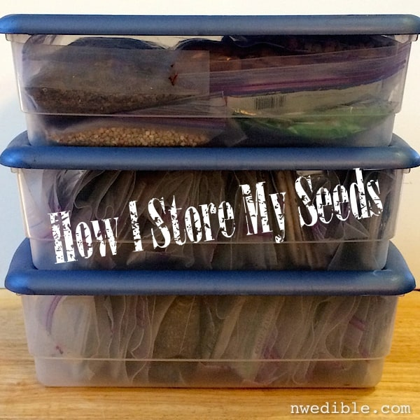 seed_storage_4