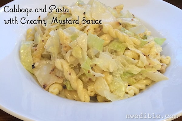 Cabbage and Pasta with Mustard Cream Sauce