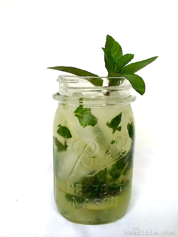 Chocolate Mint Mojito