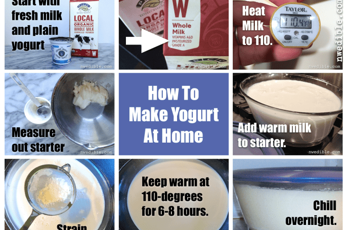 Do You Need To Heat Milk For Yogurt Making?