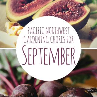 9 September Garden Chores