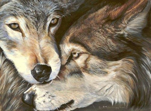Doan two wolves 16 by 12 incan ltg, Mon May 18, 2009, 7:04:26 PM, 8C, 5184x3920, (1891+3978), 150%, Default Settin, 1/8 s, R86.5, G77.3, B121.0