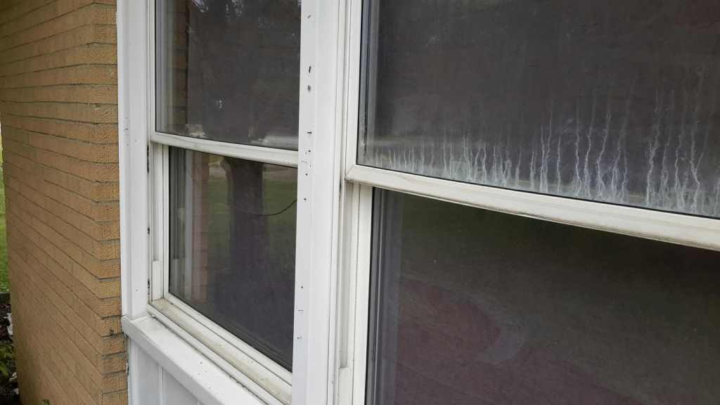 window-pane-issues