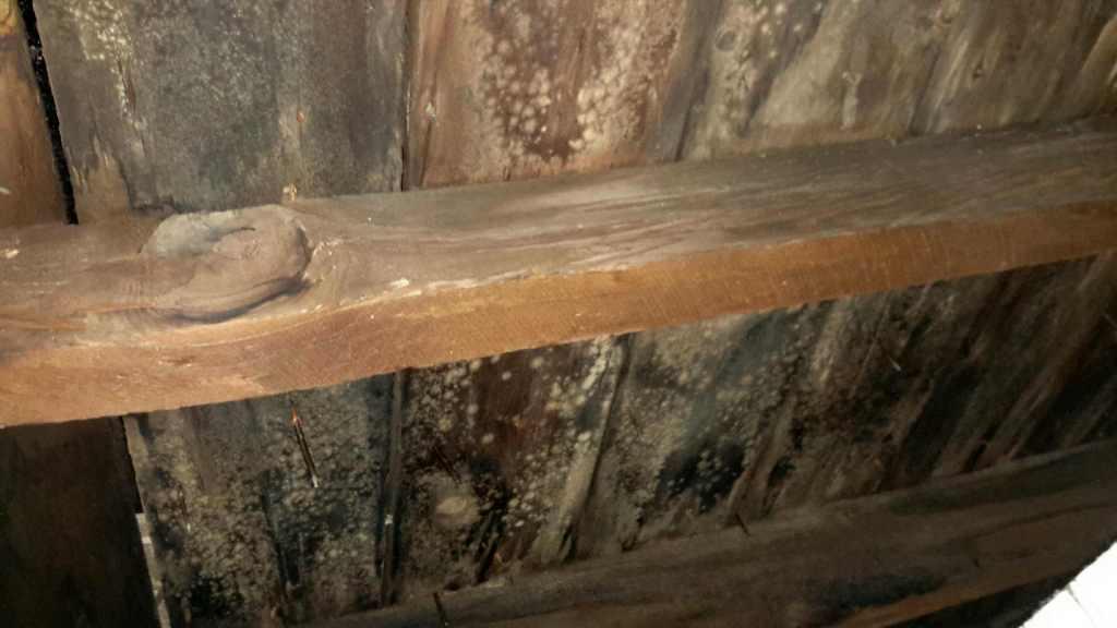 water damage-roof-attics-ice